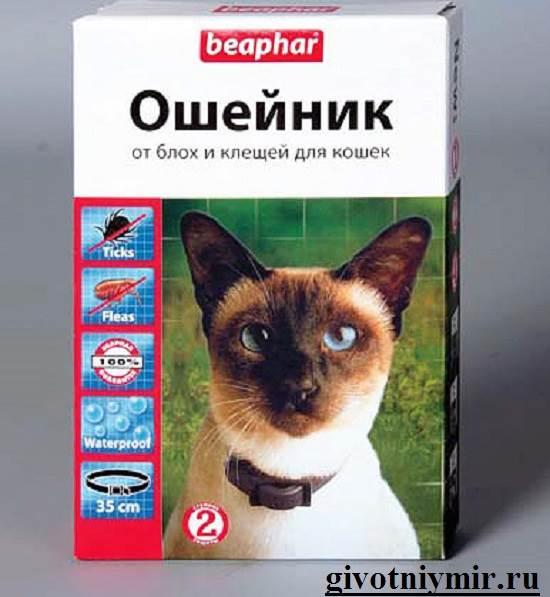 Ошейник-от-блох-и-клещей-Виды-и-особенности-ошейников-от-блох-и-клещей-2