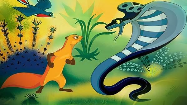 Мангуст-животное-Образ-жизни-и-среда-обитания-мангуста-24