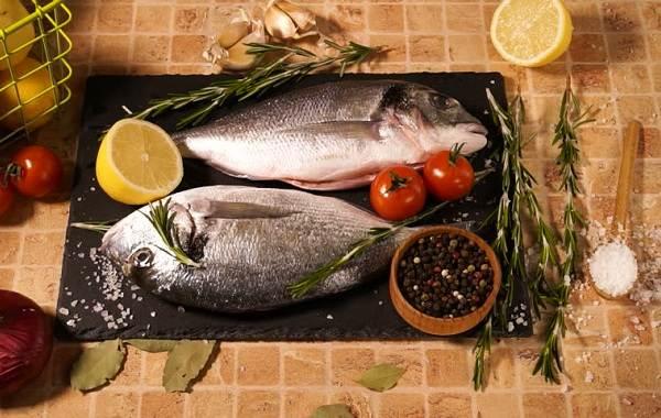 Дорадо-рыба-Образ-жизни-и-среда-обитания-рыбы-дорадо-12