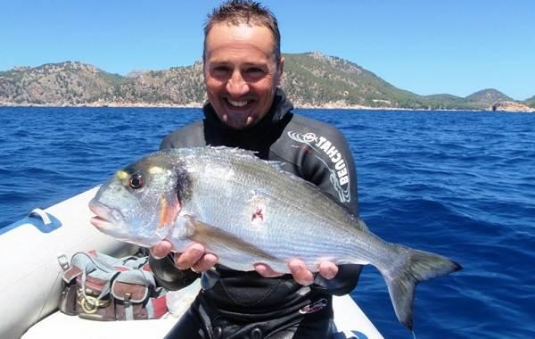 Дорадо-рыба-Образ-жизни-и-среда-обитания-рыбы-дорадо-16