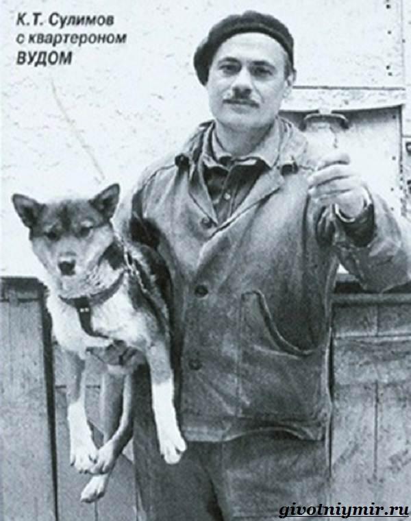 Собака-Сулимова-Описание-особенности-и-история-собаки-Сулимова-7