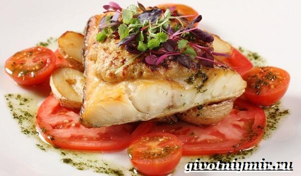 Пикша-рыба-Образ-жизни-и-среда-обитания-рыбы-пикша-7