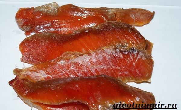 Вобла-рыба-Образ-жизни-и-среда-обитания-рыбы-воблы-6