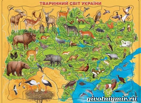 Животные-Красной-книги-Украины-2