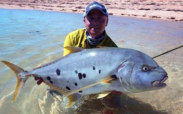 Каранкс-рыба-Описание-особенности-и-среда-обитания-рыбы-каранкс-16