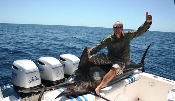 Марлин-рыба-Описание-особенности-виды-и-ловля-марлина-12