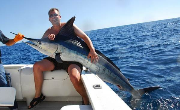 Марлин-рыба-Описание-особенности-виды-и-ловля-марлина-5