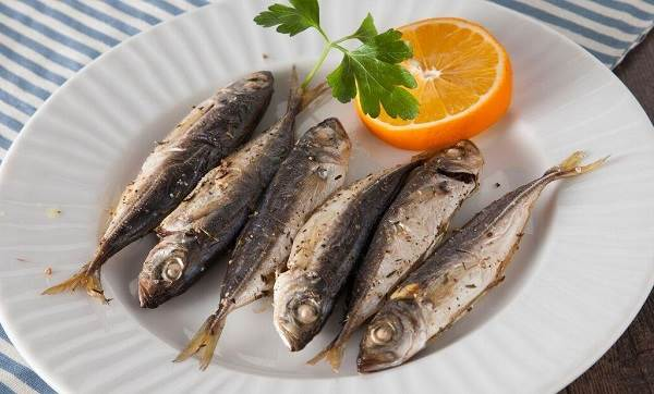 Ставрида-черноморская-рыба-Описание-особенности-и-среда-обитания-ставриды-7