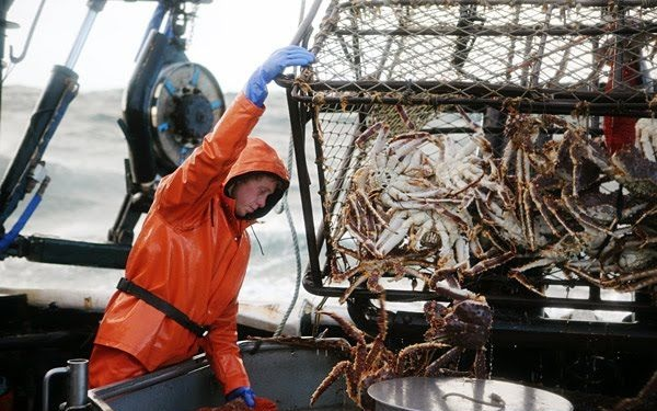 Промысловая-рыба-Названия-описания-и-виды-промысловой-рыбы-10
