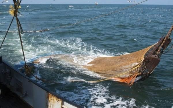 Промысловая-рыба-Названия-описания-и-виды-промысловой-рыбы-8