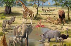 Животные саванны. Описания, названия и особенности животных саванны