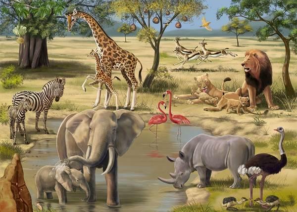 Животные-саванны-Описания-названия-и-особенности-животных-саванны-1