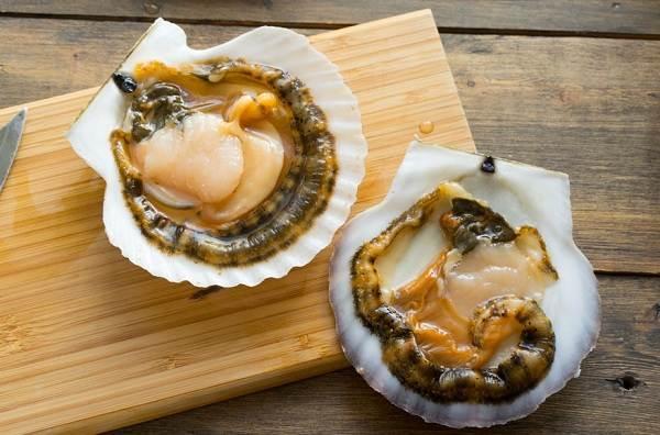 Двустворчатые-моллюски-Описание-особенности-строение-и-виды-двустворчатых-моллюсков-23
