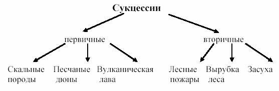 Что-такое-биоценоз-Виды-структура-роль-и-примеры-биоценоза-25