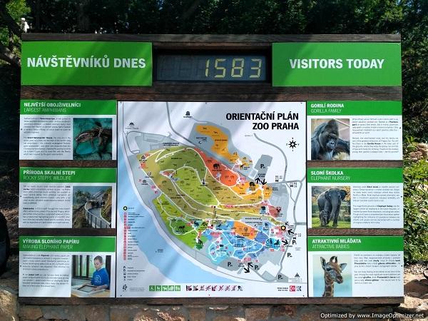 PRAGUEZOO-пражский-зоопарк-Виды-животных-и-рекомендации-для-посетителей-зоопарка-4