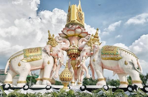 Священные-животные-Какие-виды-в-какой-стране-считаются-священными-16