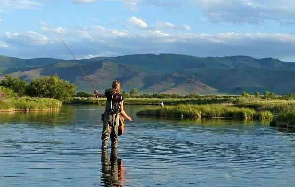 12-лучших-рыболовных-мест-Алтайского-края-Бесплатные-водоёмы-14
