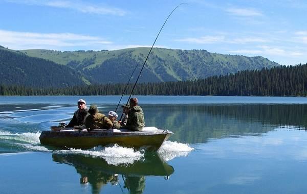 12-лучших-рыболовных-мест-Алтайского-края-Бесплатные-водоёмы-2