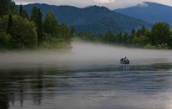 12-лучших-рыболовных-мест-Алтайского-края-Бесплатные-водоёмы-7