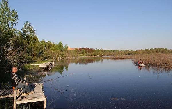 12-лучших-рыболовных-мест-в-Тюменской-области-3