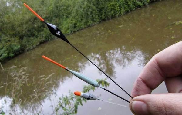 Где-как-на-что-и-в-какое-время-года-ловить-рыбу-уклейку-5