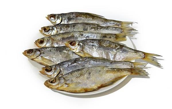 Рыба-сопа-её-особенности-где-водится-и-как-ловить-7