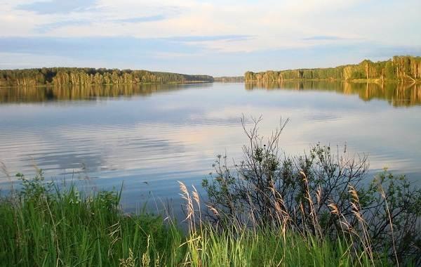 12-лучших-рыболовных-мест-Курганской-области-3