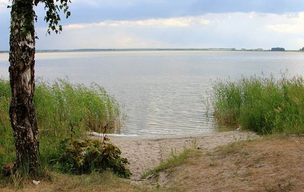 12-лучших-рыболовных-мест-Курганской-области-4