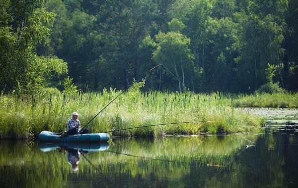 12-лучших-рыболовных-мест-Курганской-области-8