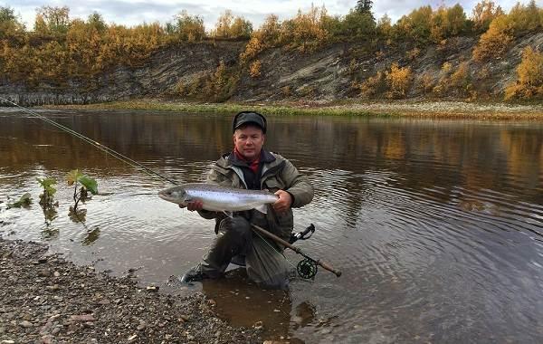 12-лучших-рыболовных-мест-в-Архангельской-области-Платные-и-бесплатные-2