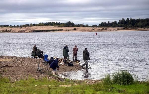 12-лучших-рыболовных-мест-в-Архангельской-области-Платные-и-бесплатные-4