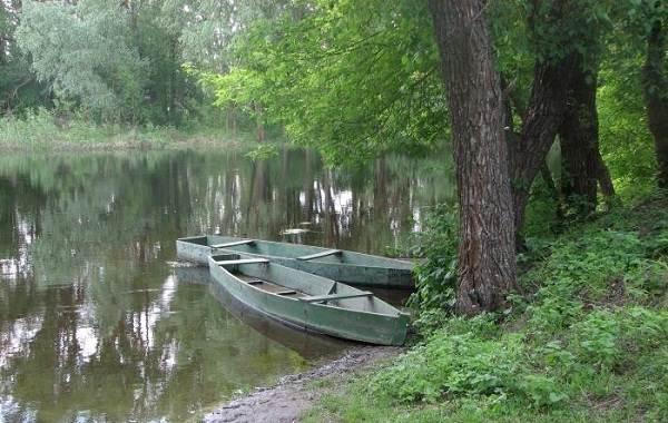 12-лучших-рыболовных-мест-в-Архангельской-области-Платные-и-бесплатные-5