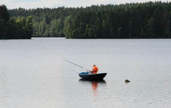 12-лучших-рыболовных-мест-в-Архангельской-области-Платные-и-бесплатные-6