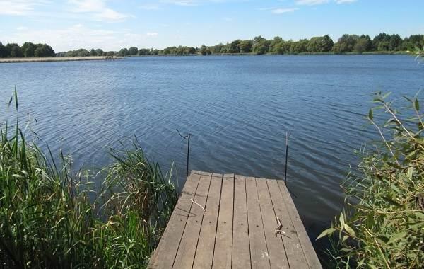 12-лучших-рыболовных-мест-в-Липецкой-области-Платные-и-бесплатные-10