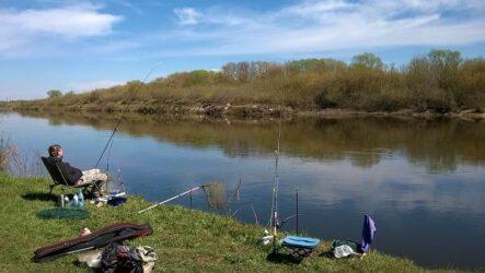 12 лучших рыболовных мест в Липецкой области. Платные и бесплатные
