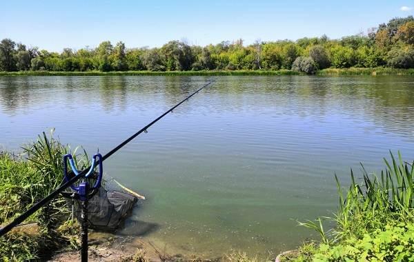 12-лучших-рыболовных-мест-в-Липецкой-области-Платные-и-бесплатные-5
