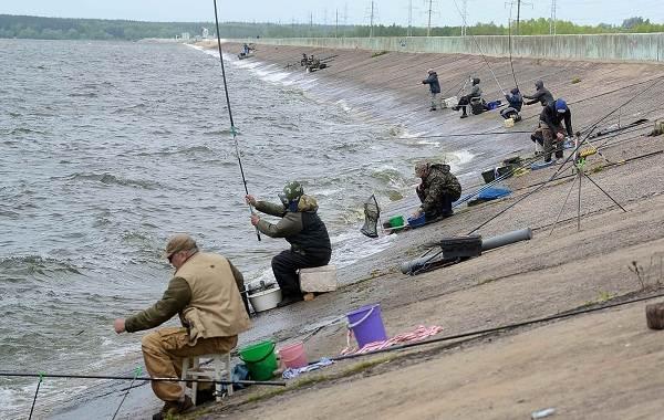 12-лучших-рыболовных-мест-в-Липецкой-области-Платные-и-бесплатные-9