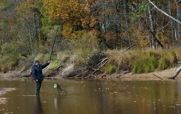 15-лучших-рыболовных-мест-в-Тульской-области-1