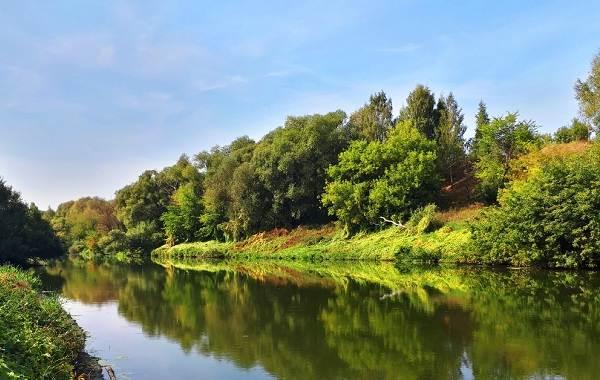 15-лучших-рыболовных-мест-в-Тульской-области-2