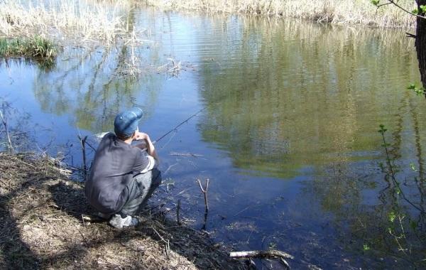 15-лучших-рыболовных-мест-в-Тамбовской-области-Платные-и-бесплатные-12