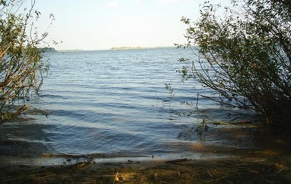 15-лучших-рыболовных-мест-в-Тамбовской-области-Платные-и-бесплатные-13