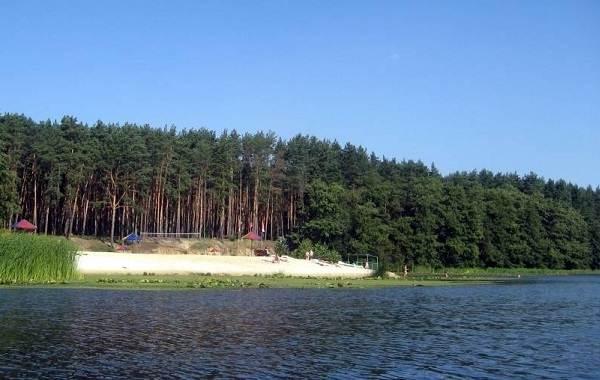 15-лучших-рыболовных-мест-в-Тамбовской-области-Платные-и-бесплатные-4