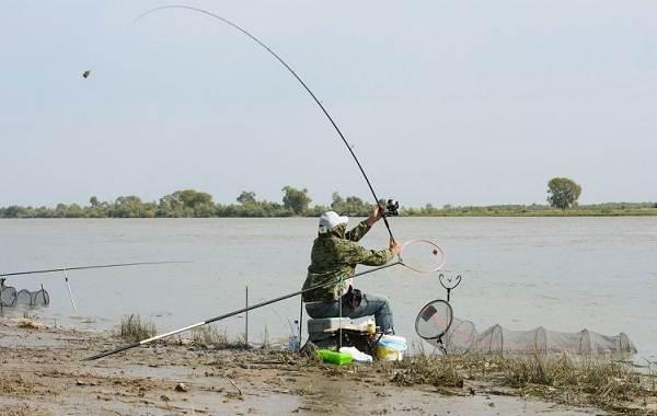 15-лучших-рыболовных-мест-Ивановской-области-Бесплатные-и-платные-11