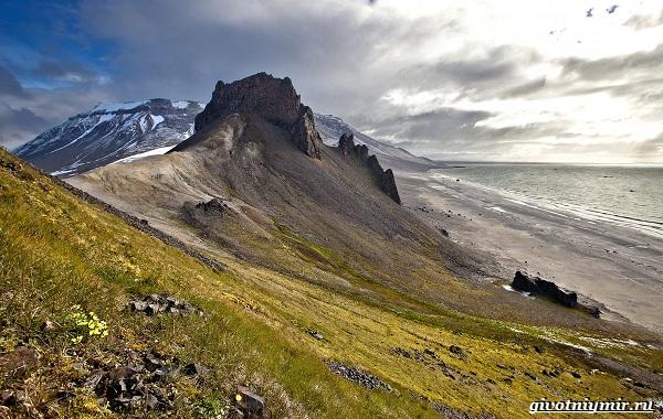 Экологические-проблемы-Арктики-и-пути-их-решения-15