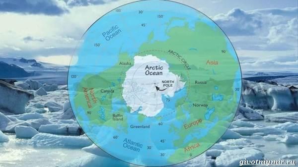 Экологические-проблемы-Арктики-и-пути-их-решения-2