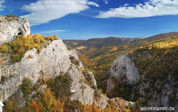 Экологические-проблемы-Крыма-и-пути-их-решения-1