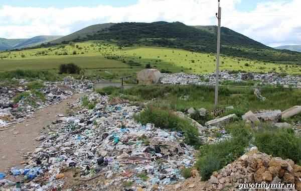 Экологические-проблемы-Крыма-и-пути-их-решения-7