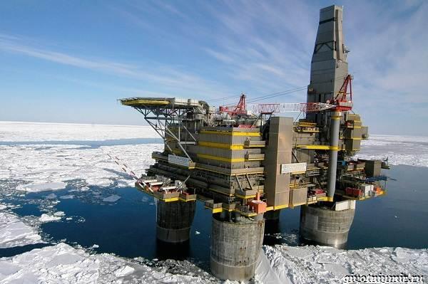 Экологические-проблемы-Северного-Ледовитого-океана-7