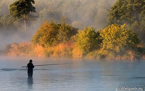 Календарь-рыболова-на-июнь-июль-август-1