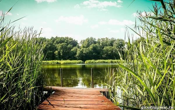 Календарь-рыболова-на-июнь-июль-август-3